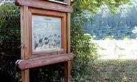Wildlife, Plant & Interpretative Signage